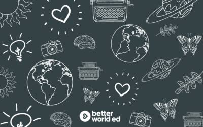 A Better World Learning Journey Story: Pricing, Sustainability, and Alignment